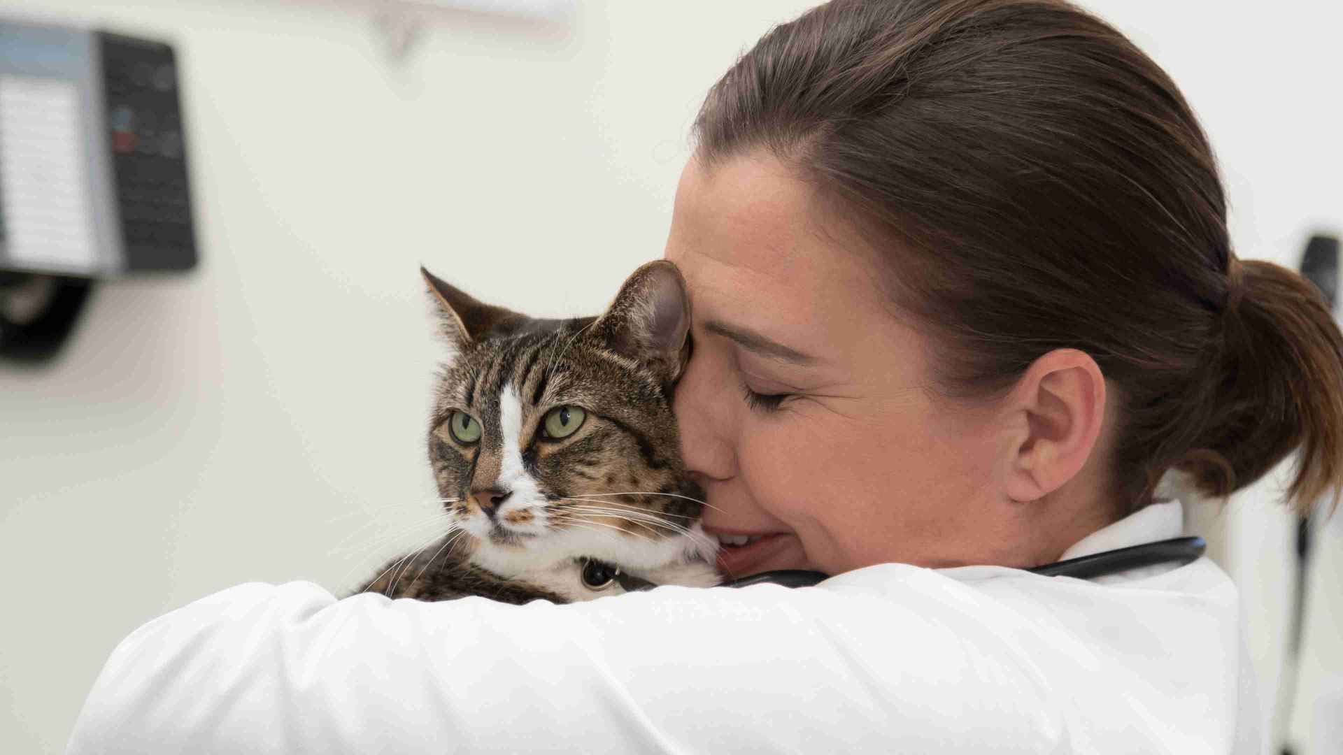 Doctor hugging Cat