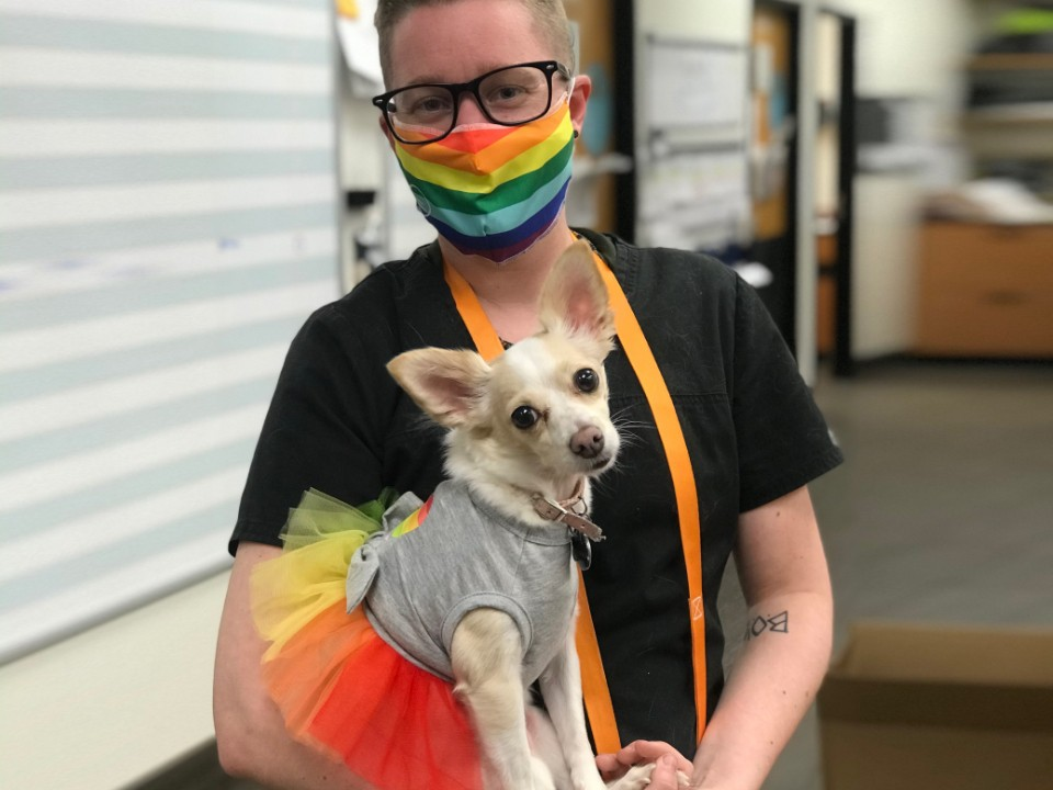 A male pet owner wearing a rainbow flag themed face mask with his dog who is wearing a rainbow flag themed dress