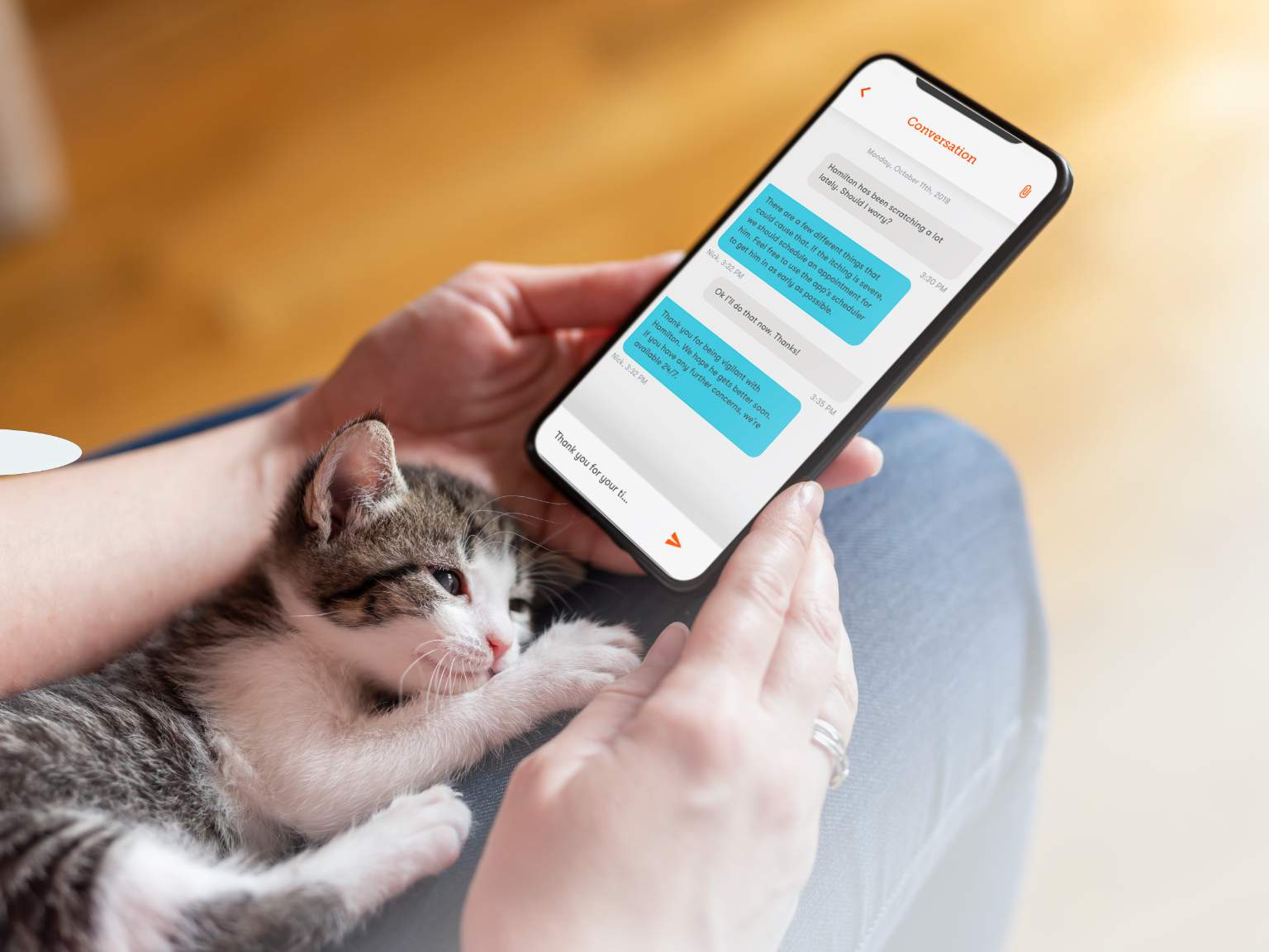 kitten in lap with mobile mockup