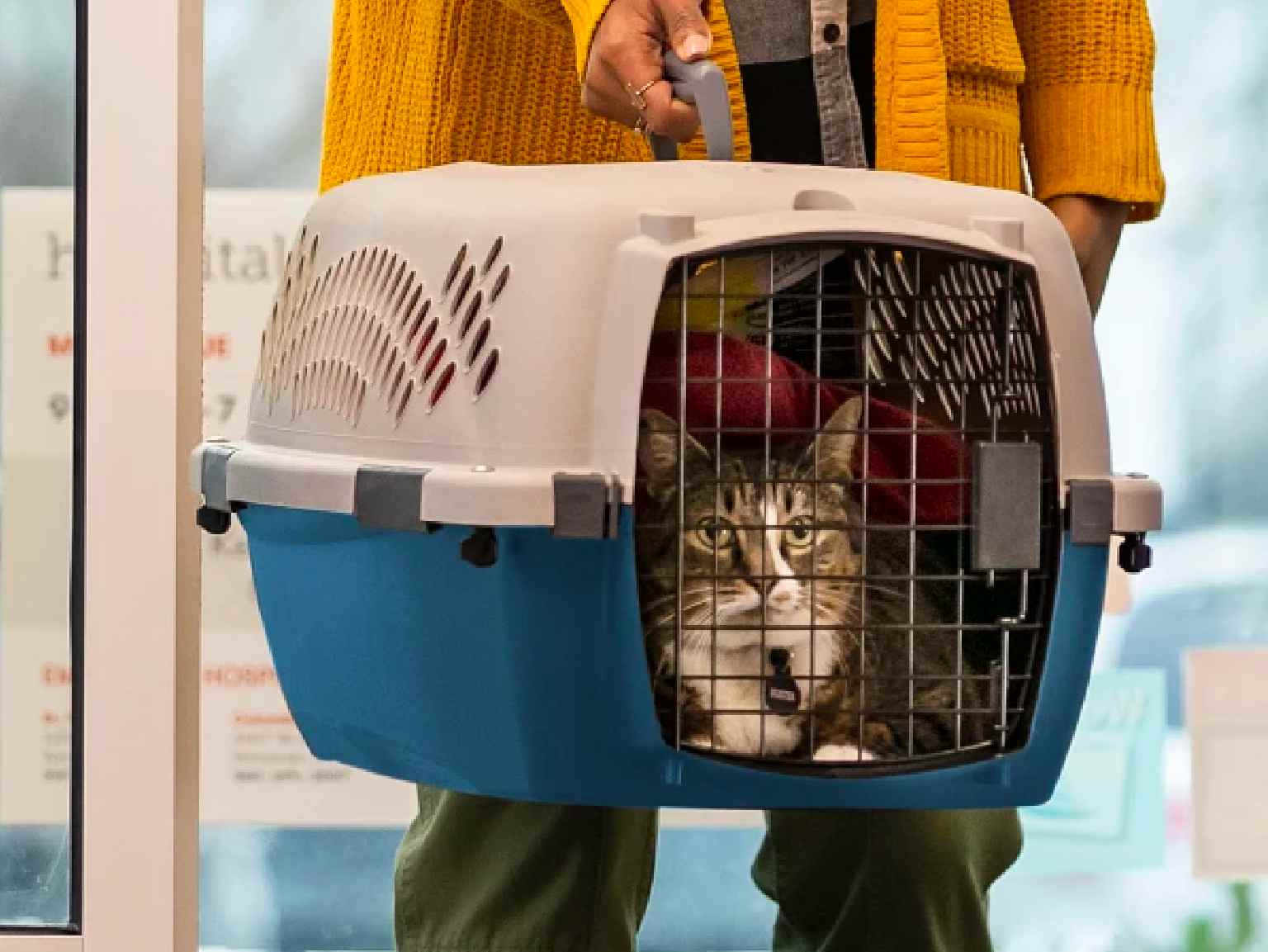 A cat owner carrying her cat in a crate