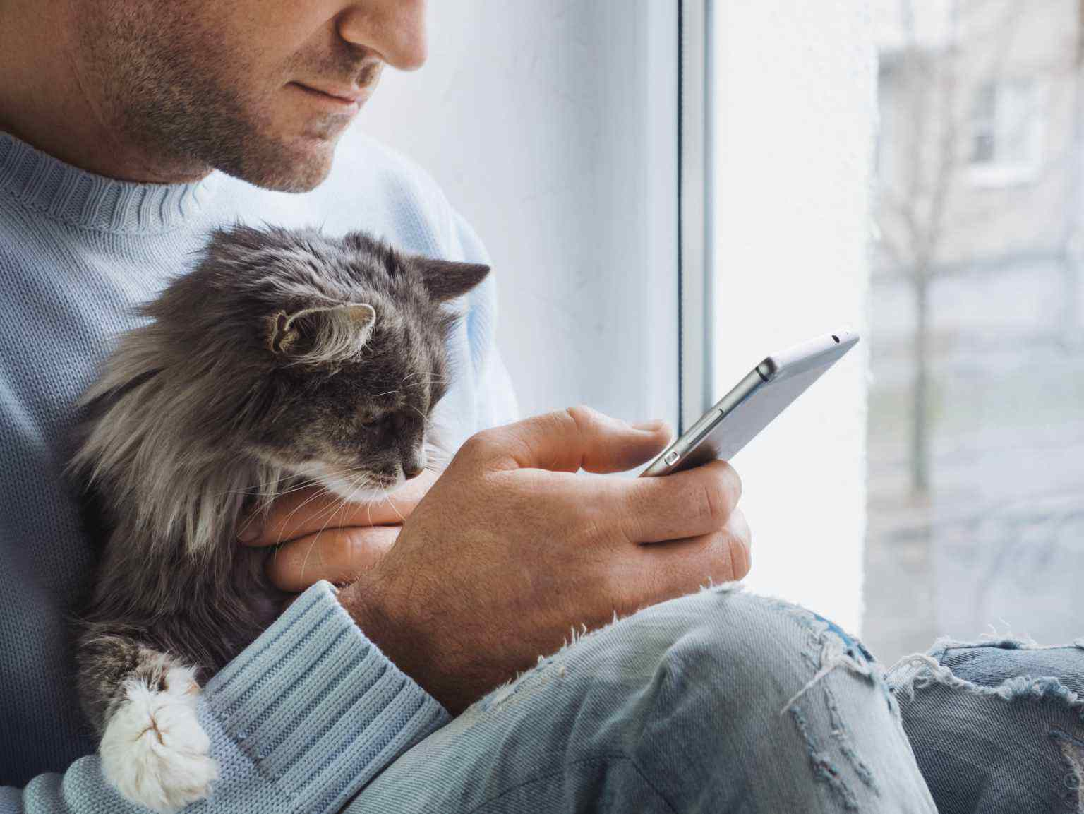A man holds his cat while reading on his smart phone in front of a window.