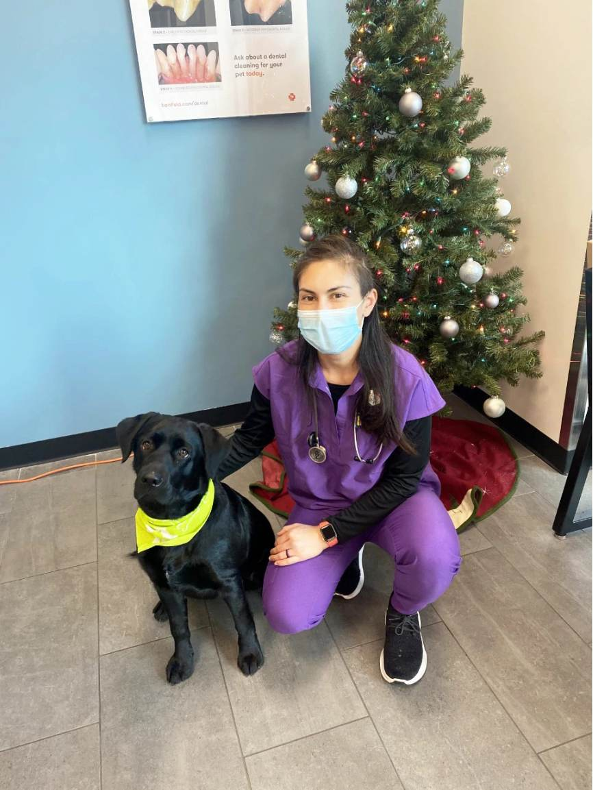 A black dog and its owner at the Banfield Pet Hospital
