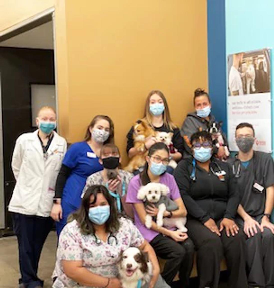 A group of Banfield Associates sitting with a few dogs at the Banfield Pet Hospital