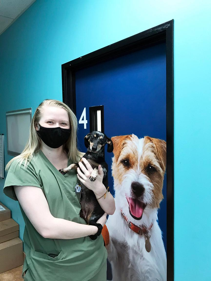 A young female associate holding a dog at the Banfield Pet Hospital