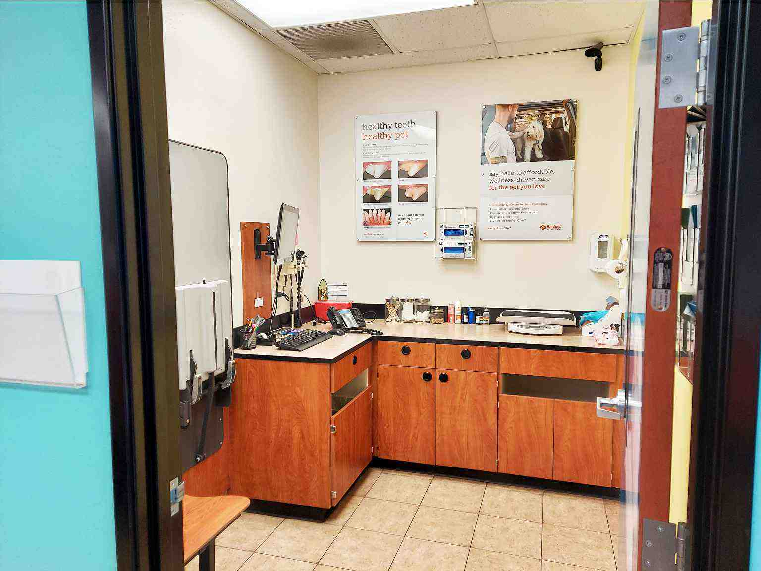 The pet examination room at the Banfield Pet Hospital