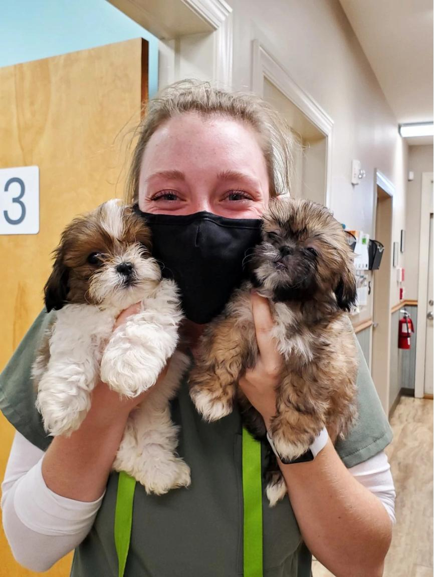 A female associate holding a couple of puppies at the Banfield Pet Hospital, Yadkin Park, NC
