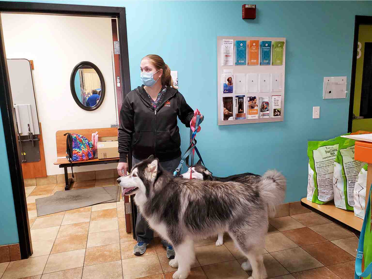A female associate holding a husky on leash at the Banfield Pet Hospital