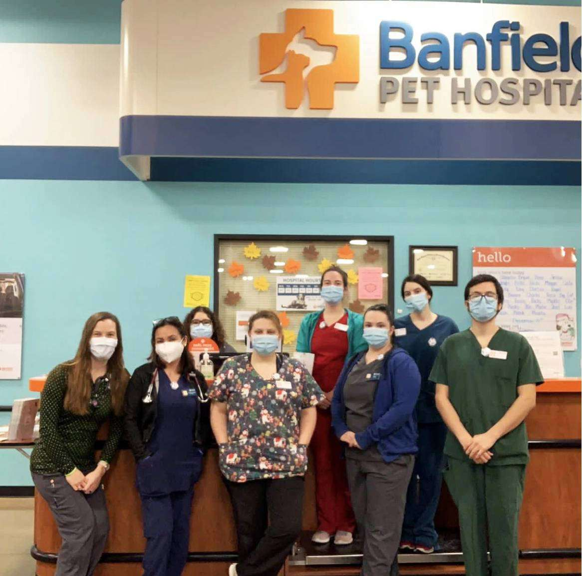 A group of associates at the Banfield Pet Hospital, Wylie, TX