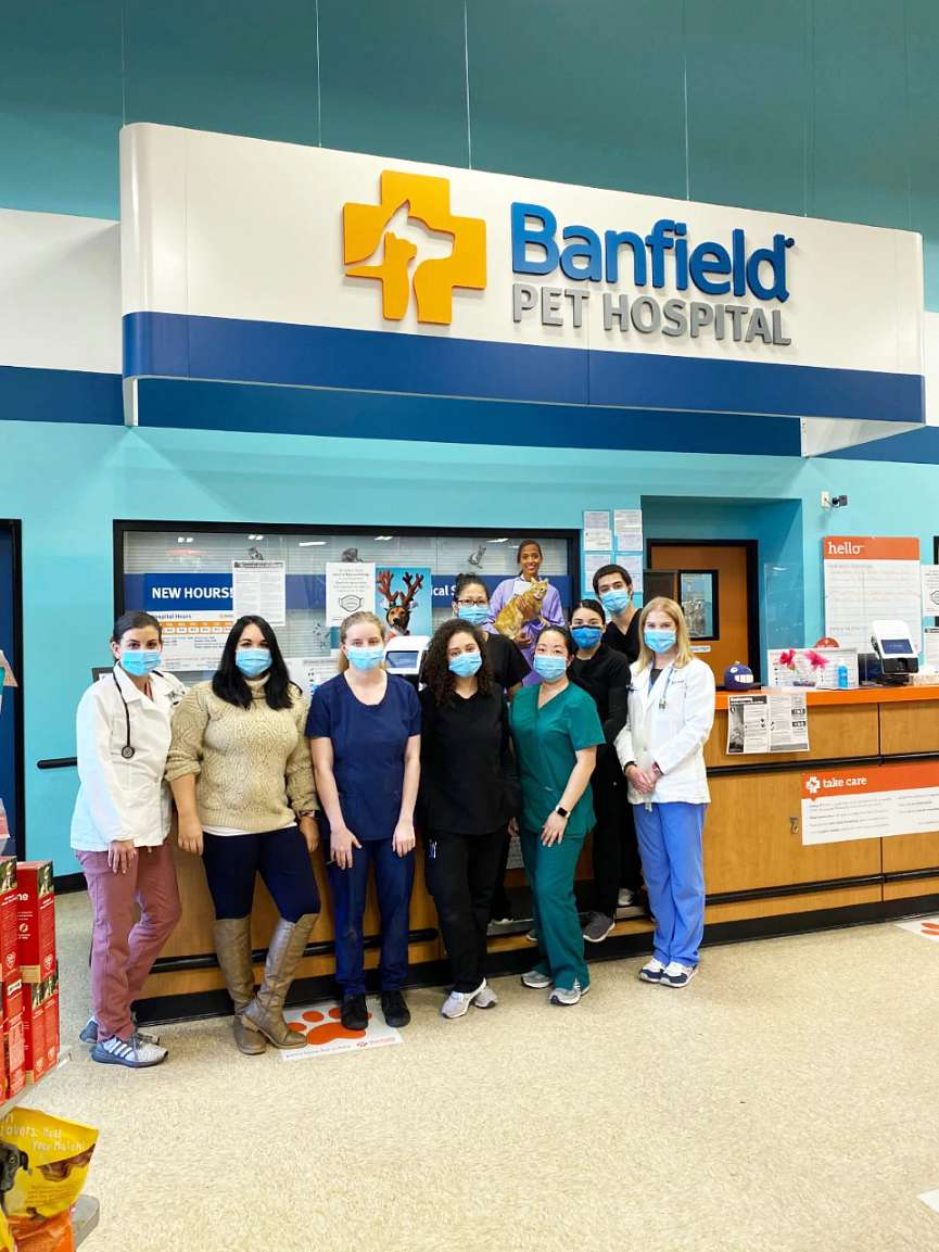 A group of associates at the Banfield Pet Hospital